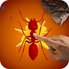 Activities of Ant Killer Insect Crush