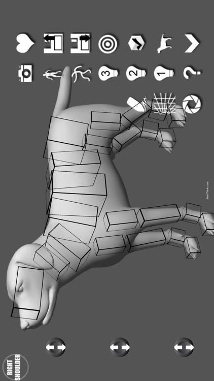 Labrador Pose Tool 3D screenshot-3