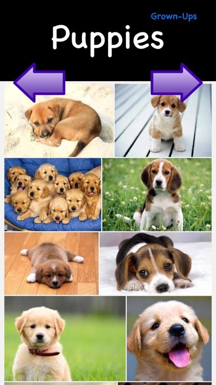Puppies & Ponies: Kid Safe Image Browser