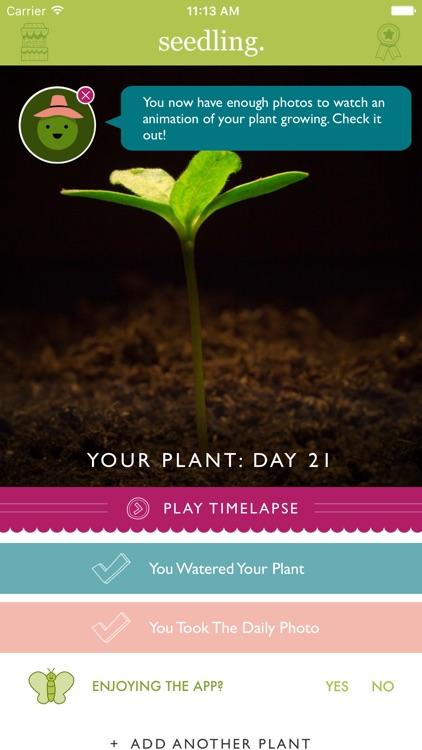 Seedling Grow screenshot-0
