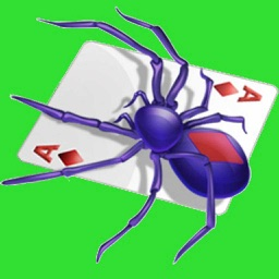 Spider Solitaire (Free)