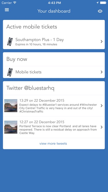 Bluestar bus screenshot-1