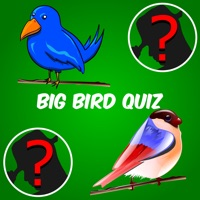 Codes for Big Bird Watchers Quiz Maestro: Ornithology Watching Word Trivia Hack