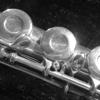 Flute+
