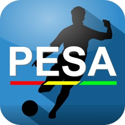 PESA - The PE and Sports Assessment Tool