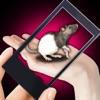 Rat Hand Funny Simulator