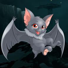 Activities of Bobby the Bat