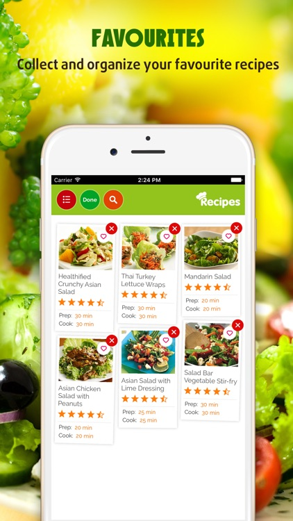 Yummy Salad Recipes Pro screenshot-3