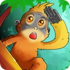 Trapped in The Jungle icon