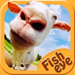 Fish Eye Camera - Selfie Photo Editor with Lens, Color Filter Effects