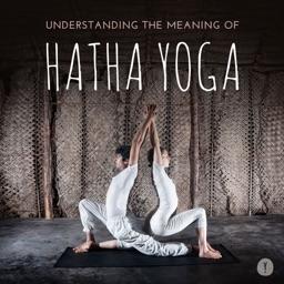 Hatha Yoga 101: Techniques and Tutorials