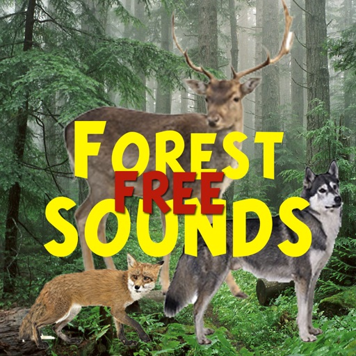 Forest Sounds Free by Алексей Neronov