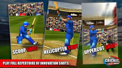 Cricket Play 3D - Live The Game (World Pro Team Challenge Cup 2016)-2