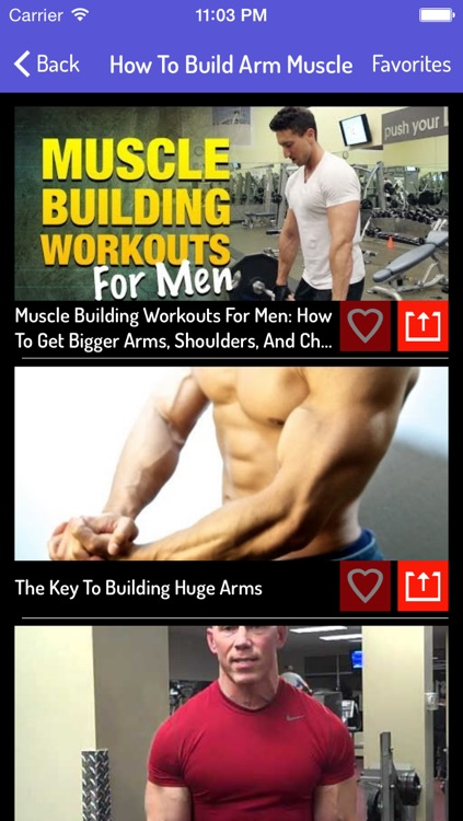 Muscles Building Guide