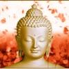 Buddha Mantras For Meditation PRO