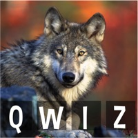 Codes for Qwiz Animaux Hack