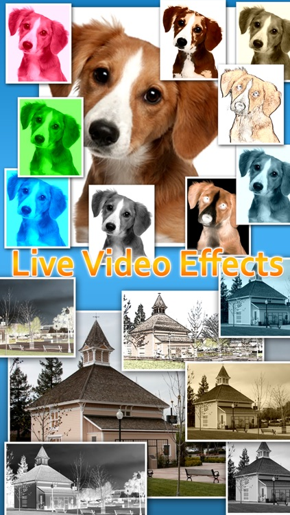Video Zoom Pro: HD Camera with Live Zoom, Effects, Pause, snapshot photo and Movie Sharing screenshot-3