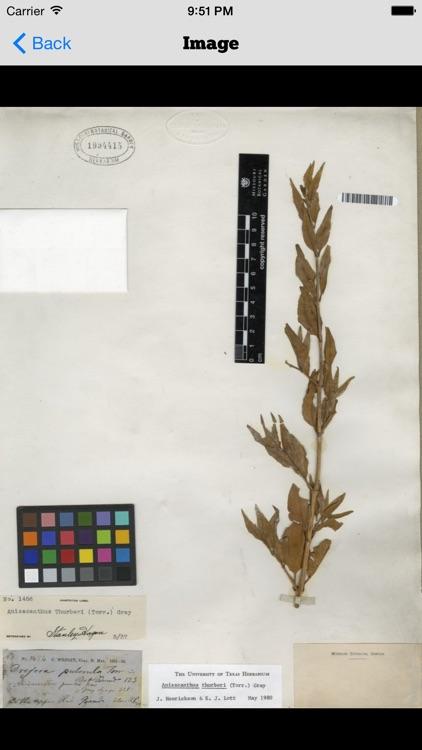 Plant-O-Matic screenshot-4