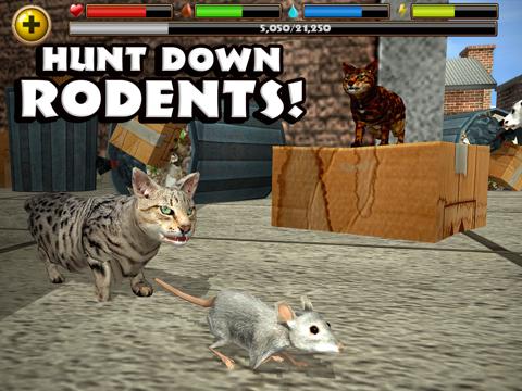 Скачать Stray Cat Simulator