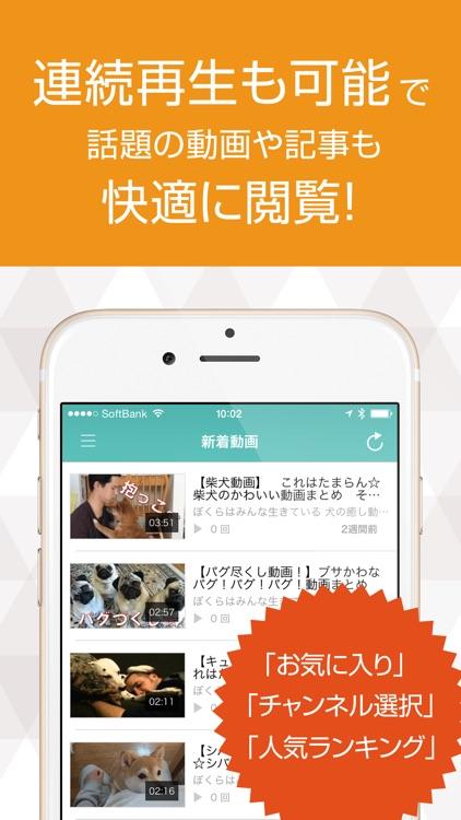 いぬ犬動画まとめ DOG TUBE screenshot-3