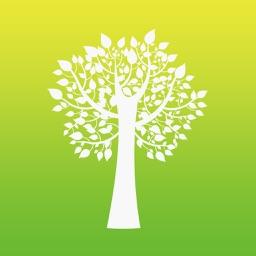 12 Tree Maps