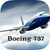 Boeing 737-700/800/NG System Knowledge & Type Rating Question Base