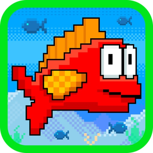 Club Fish Racer