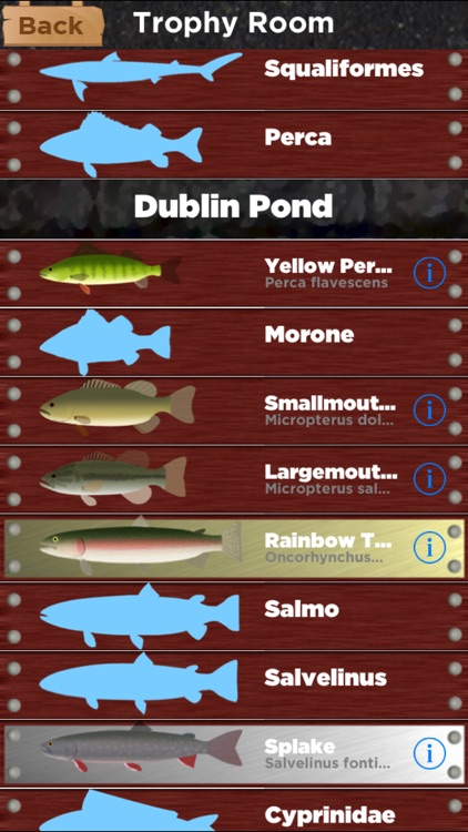 Spring Fishing screenshot-2