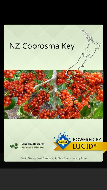 NZ Coprosma Key