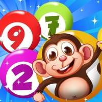 Codes for BINGO Casino Game to Play your Luck and Win the Jackpot with Animals Hack