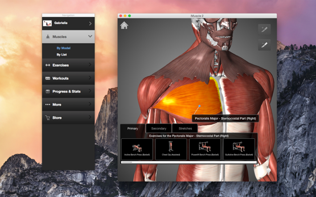 ‎iMuscle 2 Screenshot