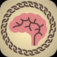 Activities of Brain Chain