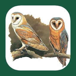 eGuide to the Handbook of Bird Identification for UK and Ireland