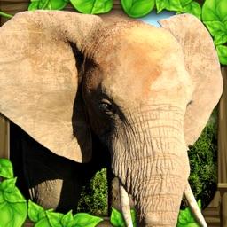 Elephant Simulator