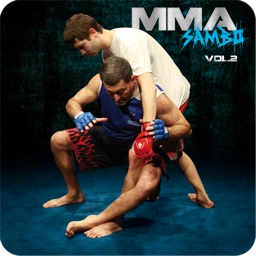 MMA - vol. 2 - Fighting Techniques
