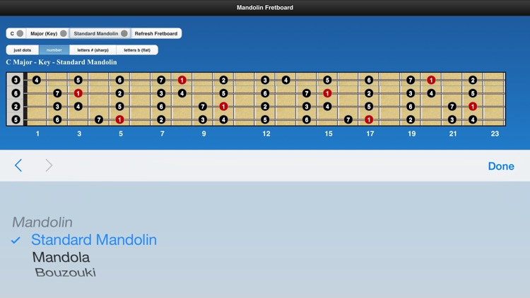 Mandolin Chords and Scales screenshot-4