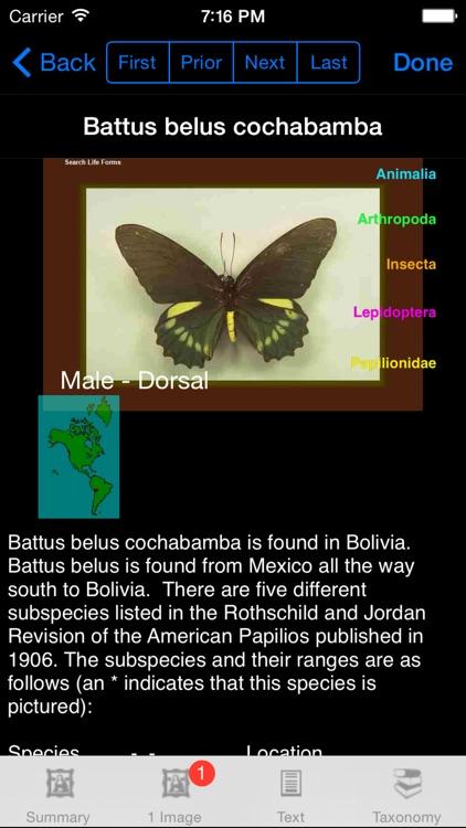 Butterflies of the World - A Butterfly App screenshot-4