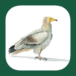 eGuide to the Handbook of Bird Identification for North Africa