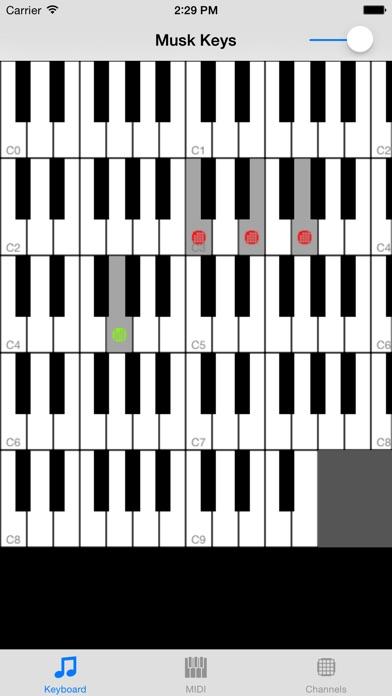 Musk MIDI Keyboard