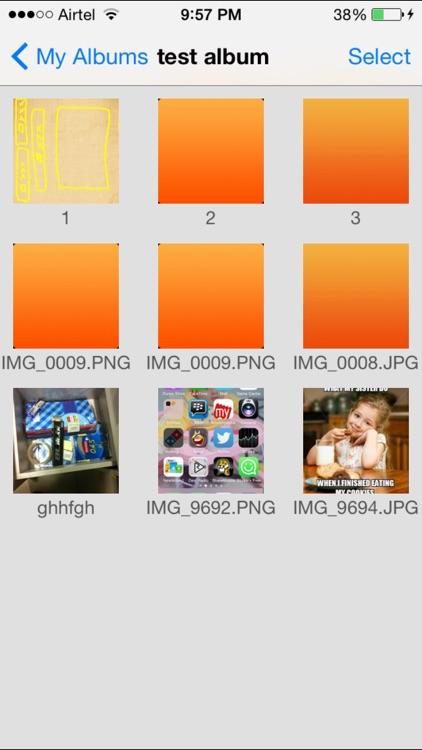 Picasa Pro screenshot-3