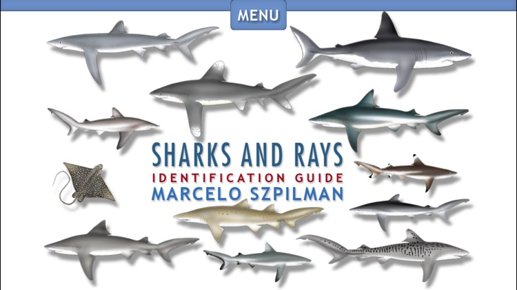 Sharks & Rays - Identification Guide
