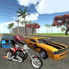 Activities of Bike Car Race