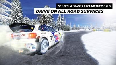 Screenshot from WRC The Official Game