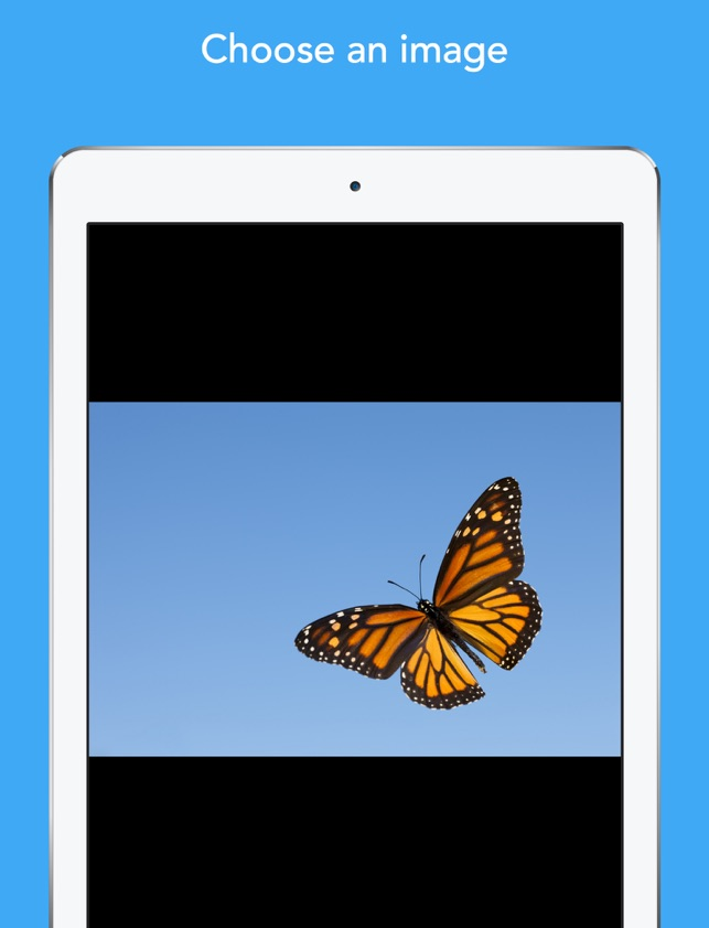 Colorscape - color your photos on the App Store