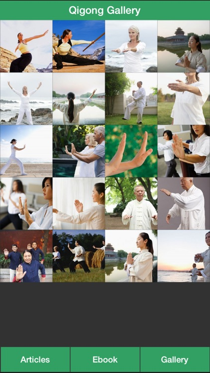 Qigong Guide - Everything You Need To Know About Qi Gong ! screenshot-1