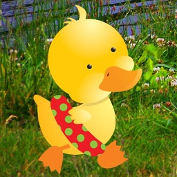 Tappy Duck: Tap to Jump Arcade Game