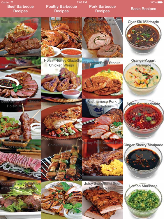 Asian Barbecue Cookbook for iPad