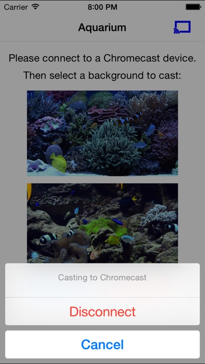 Aquarium on TV for Chromecast screenshot-3