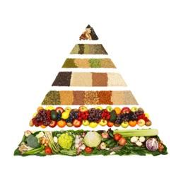 Ketogenic Diet - Best Video Guide