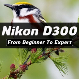 iD300 - Nikon D300 Guide And Training